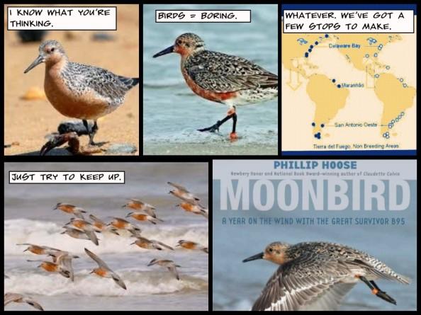 MOONBIRD Comic by 3DTOPO Inc.